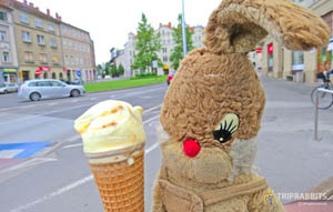 Lastovka Ice Cream